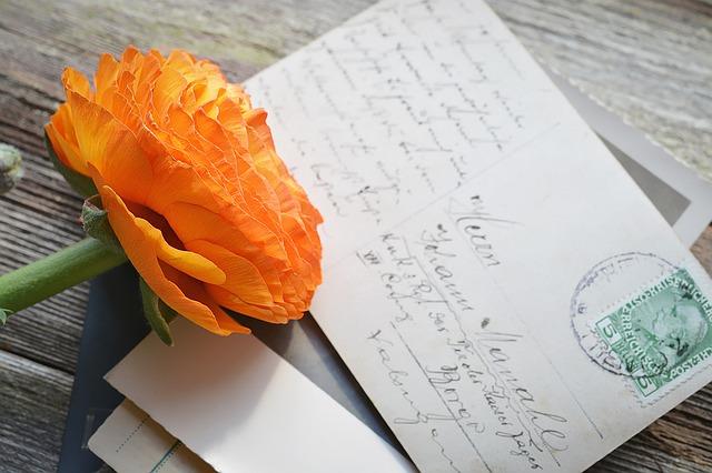 Pohlednice s květinou